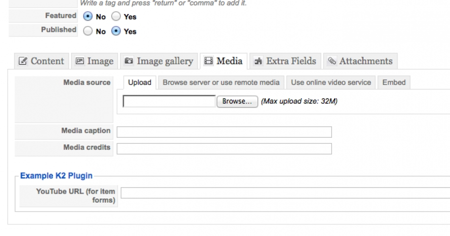 Image showing the plugin field displaying in the media tab